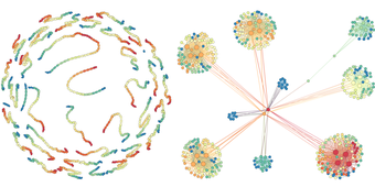 Powerful new metric quickly reveals network structure at multiple scales