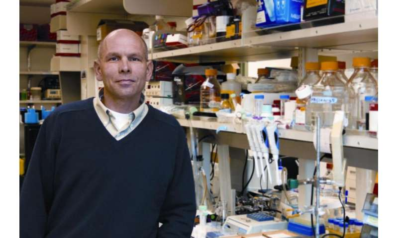 Precision oncology could be tailor-made for metastatic prostate cancer