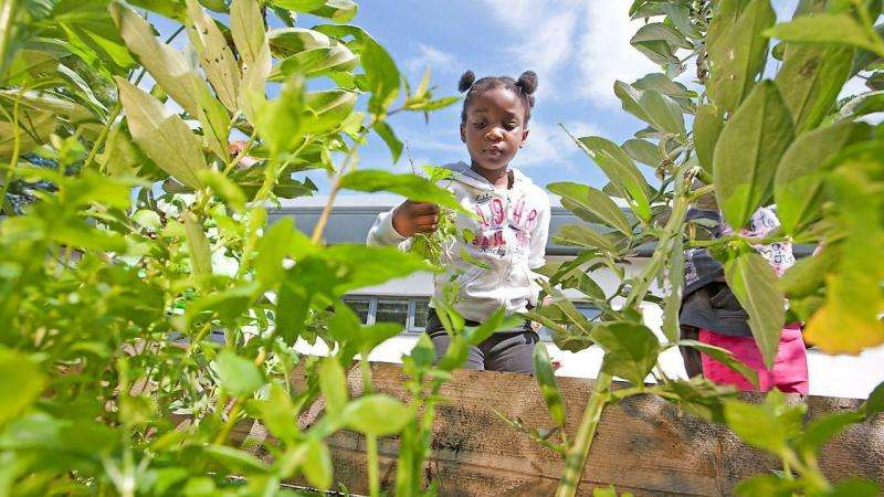 Project encourages pupils to realise benefits of outdoor learning