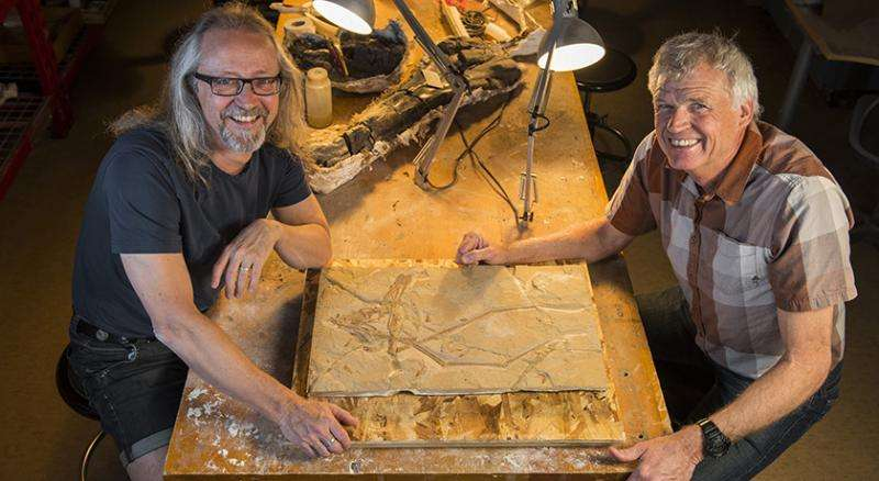 Pterosaur discovered in Lebanese quarry after 95 million years