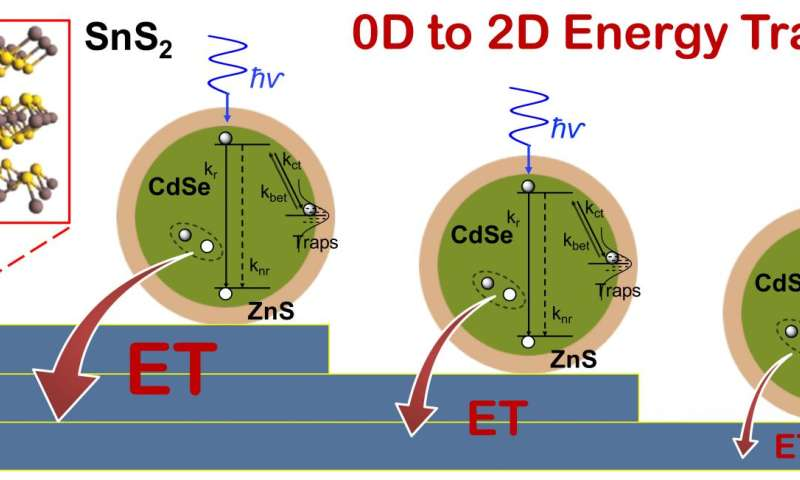 Quantum dots enhance light-to-current conversion in layered semiconductors