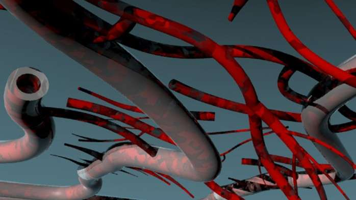 Recreating the web of blood vessels that keep human tissue alive