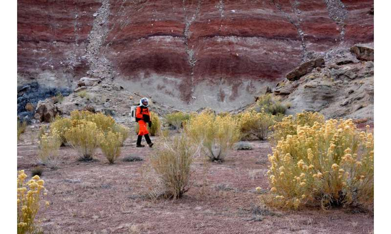 Remarkably diverse flora in Utah, USA, trains scientists for future missions on Mars