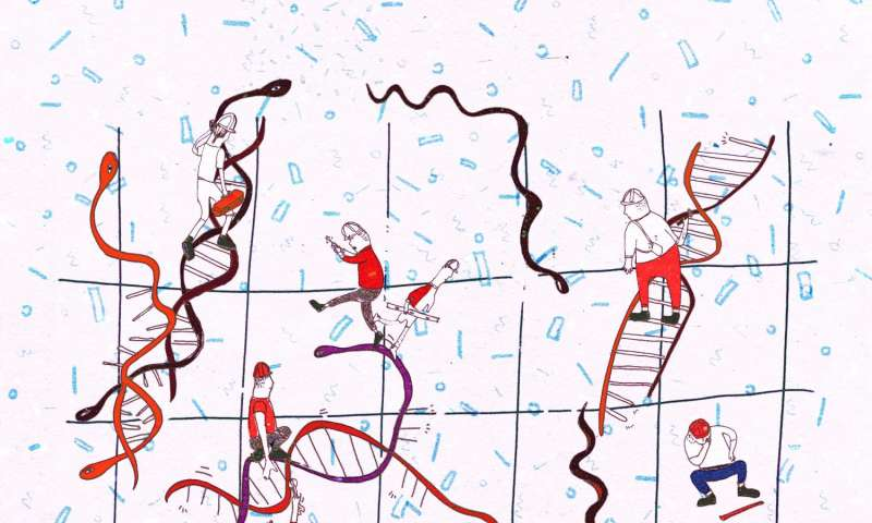 Repairing DNA damage in the human body