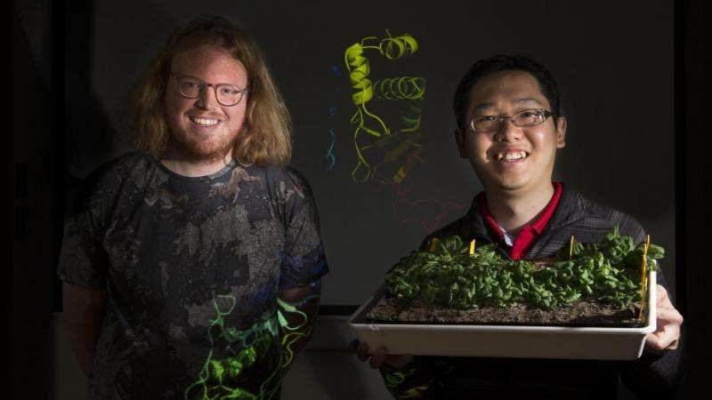 Research effort to develop drought-proof crops