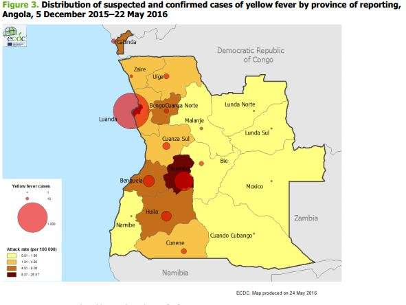Risk of international spread of yellow fever re-assessed in light of the ongoing outbreaks