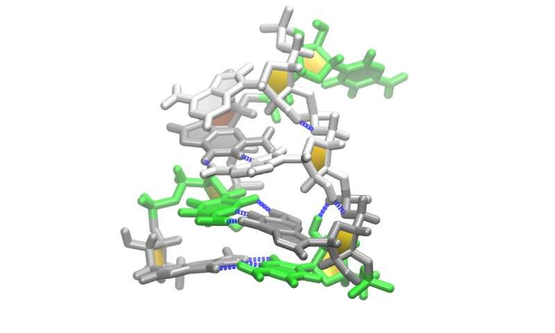 RNA simulations boost understanding of retroviral diseases