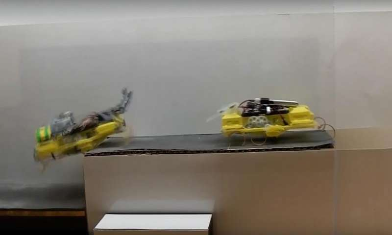 Roach-like robots run, climb and communicate with people