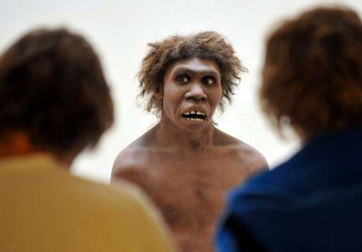 Scientists found that DNA from Neanderthals, depicted here in a model on display at the National Museum of Prehistory in Dordogn