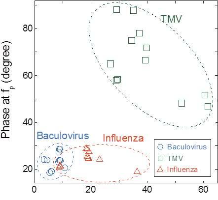 Sensing viruses by exploring their electrical properties