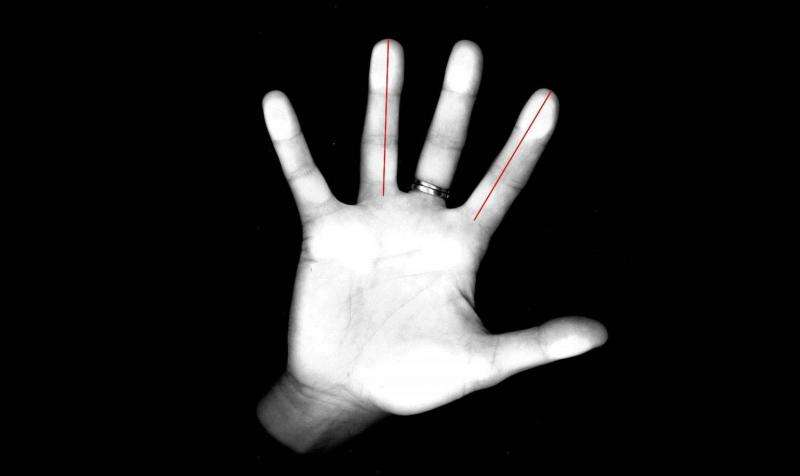 Show your fingers to a neuroscientist