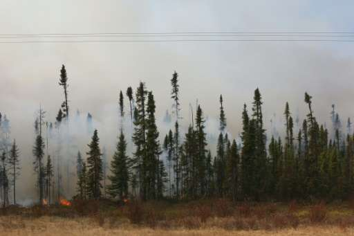 Smoke and flames are seen in the trees along the highway near Fort McMurray, Alberta on May 6, 2016