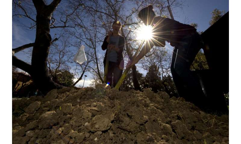Soil will absorb less atmospheric carbon than expected this century