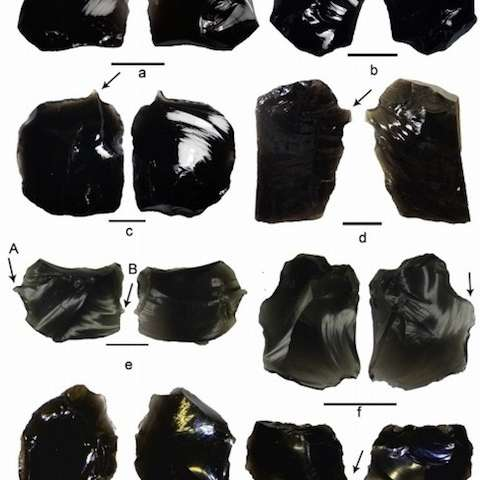 South Pacific Islanders may have used obsidian 3,000 years ago to make tattoos