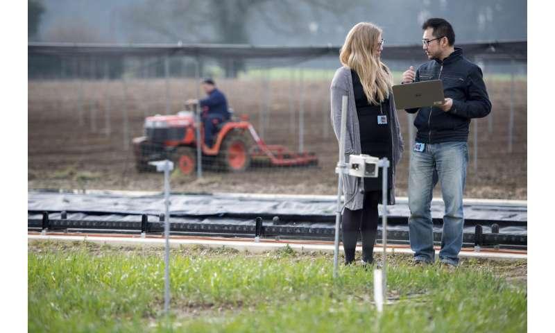 Strike a pose -- bringing crop analysis into the 21st century
