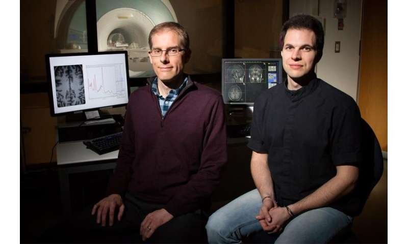 Study: Brain metabolism predicts fluid intelligence in young adults