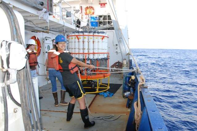 Study finds increased ocean acidification due to human activities