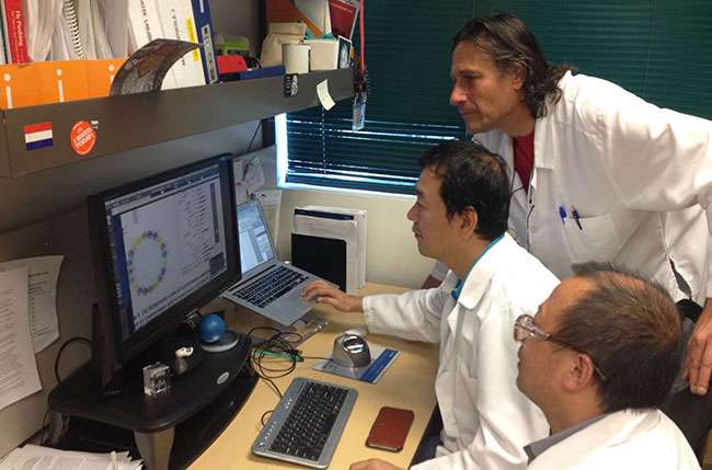 Study finds potential new biomarker for cancer patient prognosis