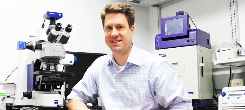 Study may explain gene's role in major psychiatric disorders