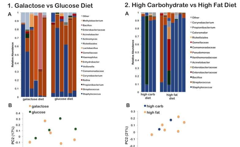 Study shows maternal diet alters the breast milk microbiome and microbial gene content