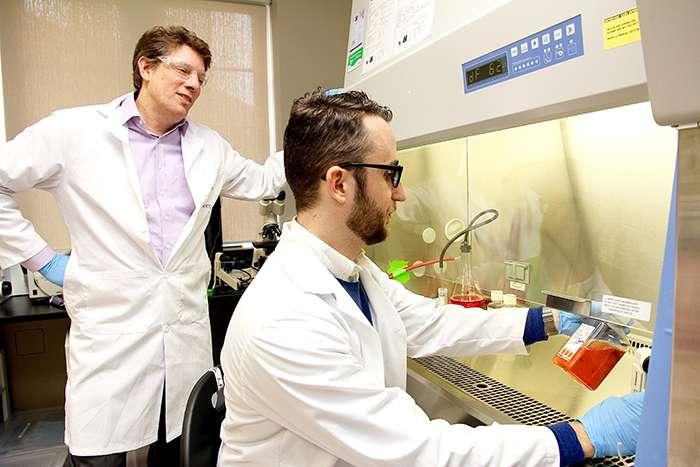 Study unlocks secret of common HIV strain