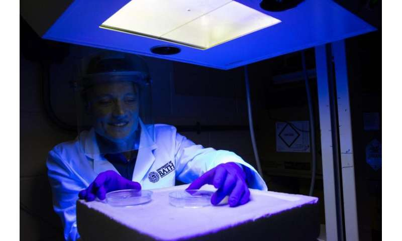 Sun cream compound offers unprecedented protection against UVA radiation