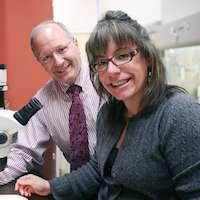 Surprising mechanism of acid reflux damage identified by UTSW/Dallas VA researchers