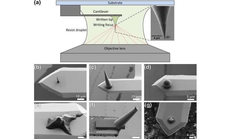 Tailored AFM probes created via 3-D direct laser writing