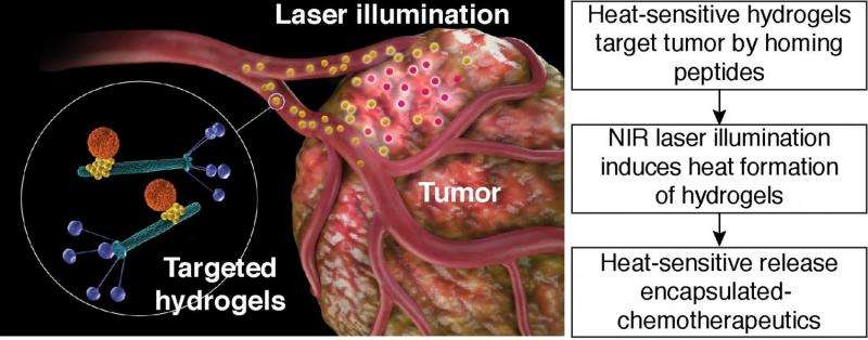 Targeted Hydrogel Photothermal Therapy