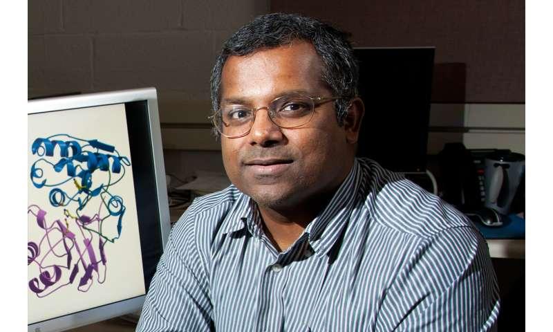 Team finds new way to attach lipids to proteins, streamlining drug development