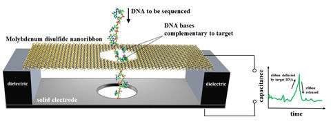 Team suggests nanoscale electronic motion sensor as DNA sequencer