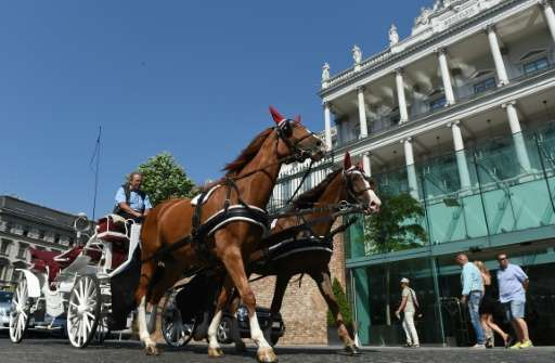 """The Austrian capital's carriages, known as """"fiakers"""", are a massive tourist magnet, taking people around the main sigh"""