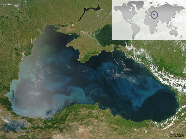 The Black Sea has lost more than a third of its habitable volume