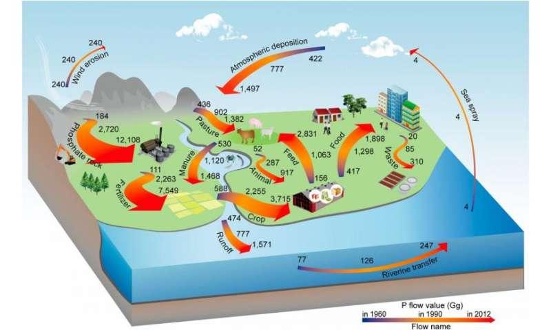 La historia de China contada a través del fósforo