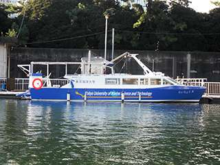 Toshiba Pure Hydrogen Cell System Takes to the Sea