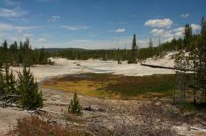 Tracking microbial mat formation in Yellowstone
