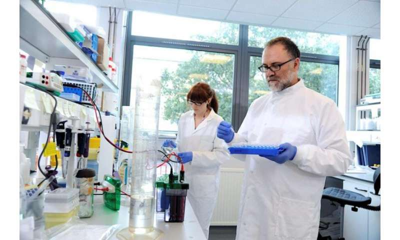 Treatment approach used in cancer holds promise for Alzheimer's disease