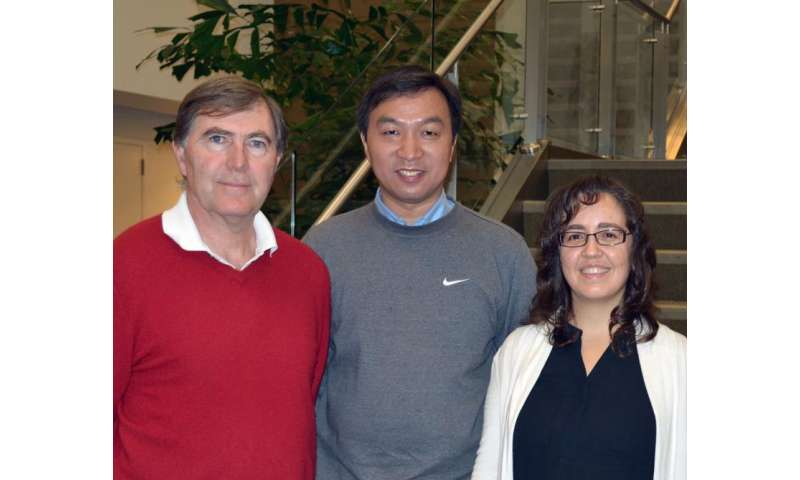 TSRI researchers uncover potential target for treating autoimmune disease