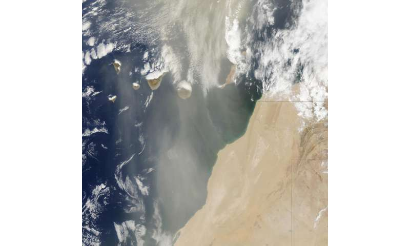 UGA study finds Saharan dust affects marine bacteria, potential pathogen Vibrio
