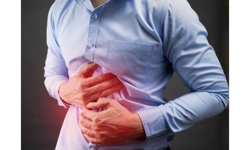 Unlocking secrets of the immune system could help combat colitis
