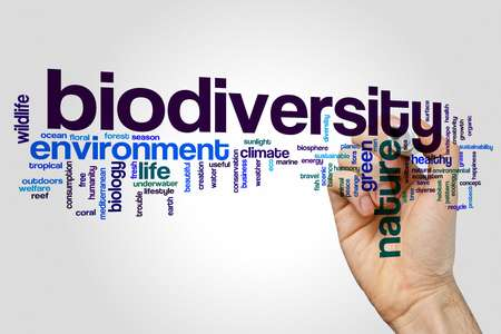 Vital improvements needed to forecast impact of climate change on biodiversity