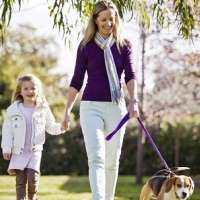 Walking the dog keeps owners healthy and neighbourhoods feeling safe