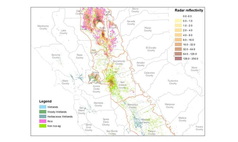 Weather radar helps researchers track bird flu