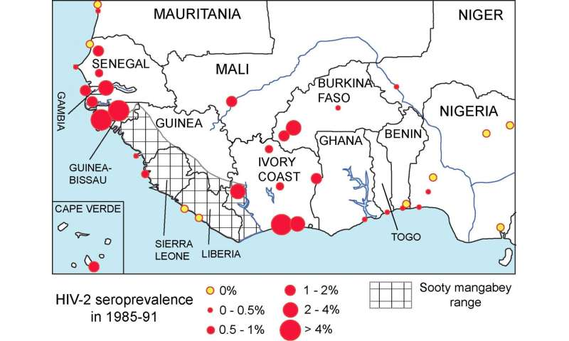 West African HIV-2 prevalence associated with lower historical male circumcision rates