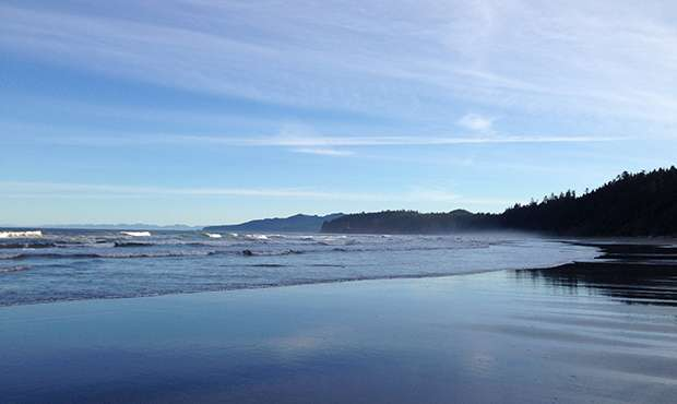 West Coast study emphasizes challenges faced by marine organisms exposed to global change