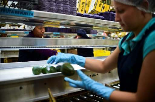 While there is a strong local demand in Mexico, production has soared along with the avocado's ever-growing international appeal