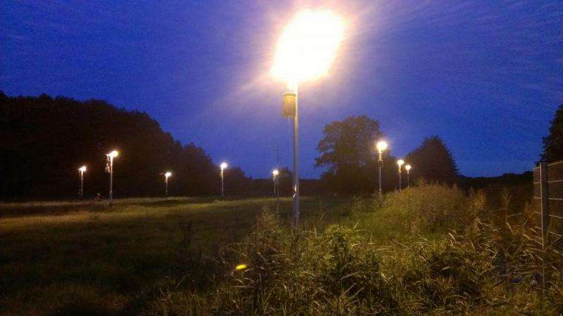 Why moths are attracted to light − increased barrier effects through street lighting