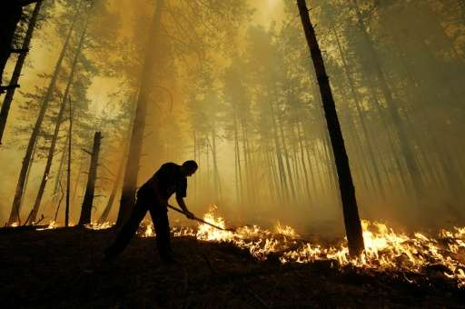 Wildfires left to burn out of control are consuming millions of hectares of pristine Boreal forests in Russia