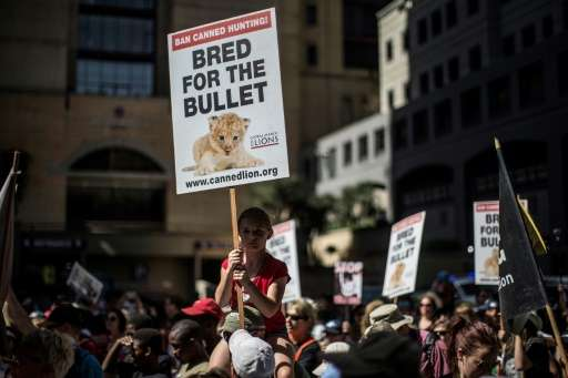 Wildlife campaigners generally welcomed decisions taken at the CITES conference, adding that concrete action was now needed to t