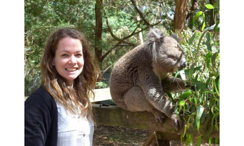 Will climate change make the koalas' diet inedible?